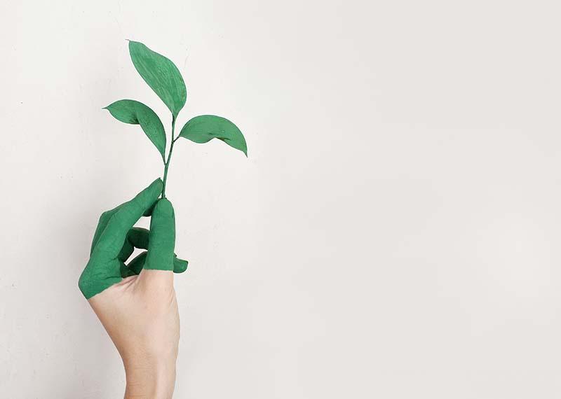 Sustainable ERP
