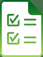 ERP System Audit