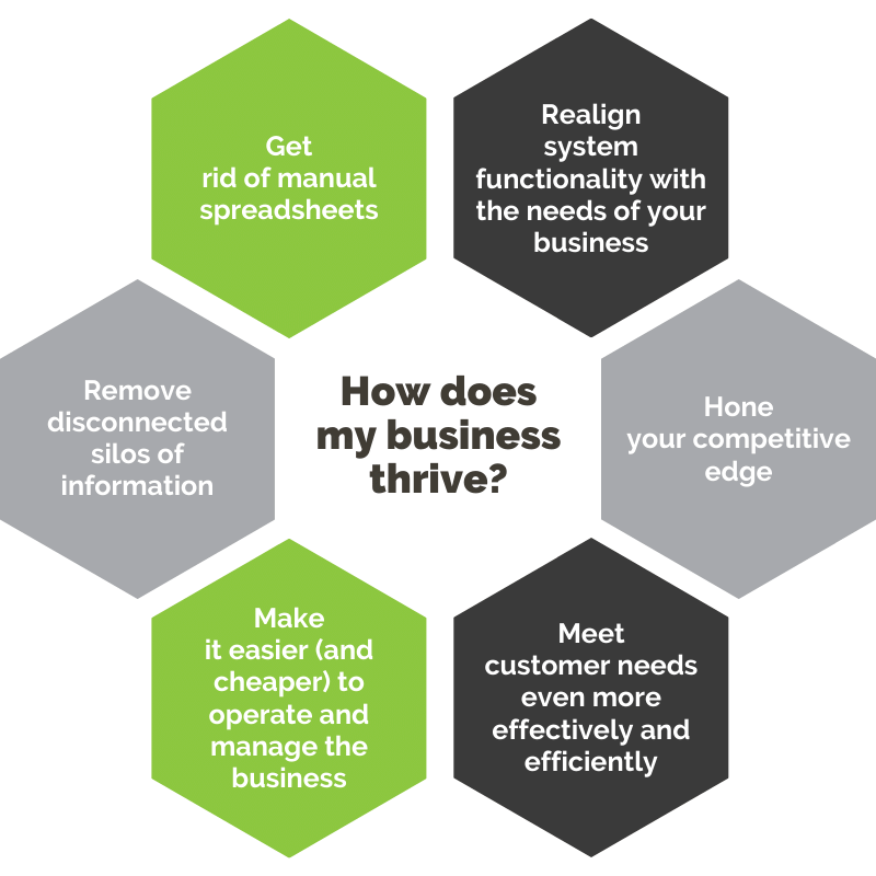 How does my business thrive